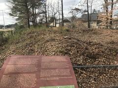 Shoupade on Johnstons River Line