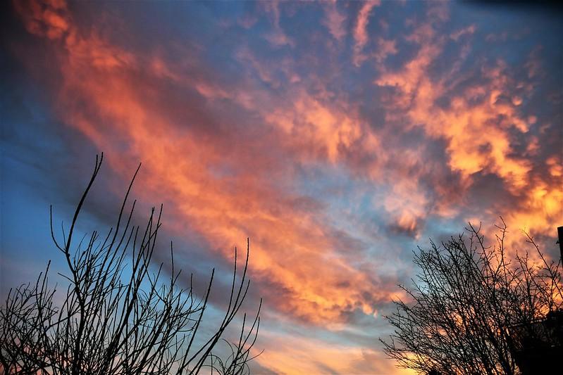 Sunset A 23.02 (6)
