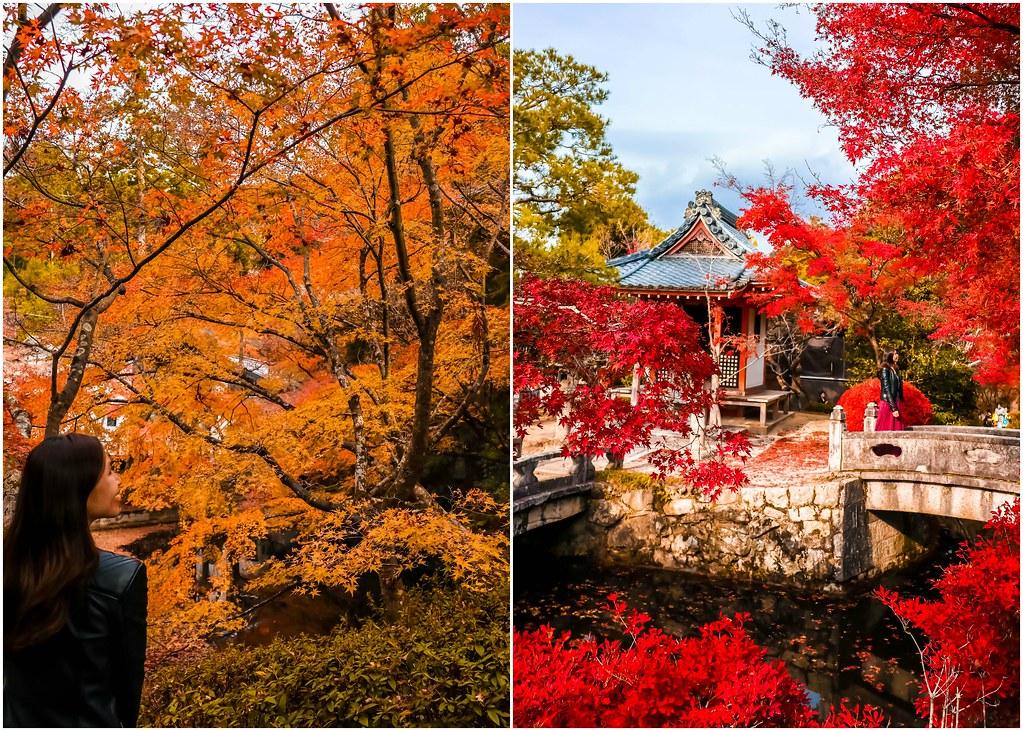 kyoto-higashiyama-autumn-alexisjetsets
