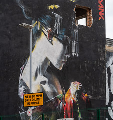 STREET ART IN BELFAST [URBAN EXPRESSION AND DEPRESSION AT THE CORNER OF ACADEMY STREET AND EXCHANGE STREET]-150885