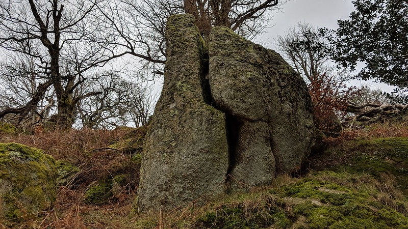 The Egg Rock at Whiddon Park Tor
