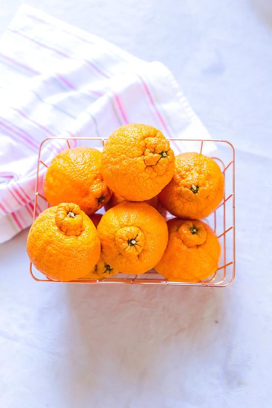 Sumo Orange Citrus Cake
