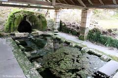24 St-Pardoux-de-Mareuil - Fontaine et Lavoir des Caves - Photo of Combiers