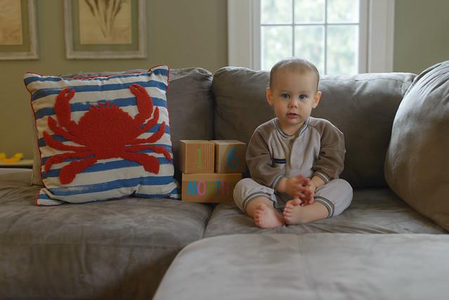 Thomas 16 months Nov 7-8