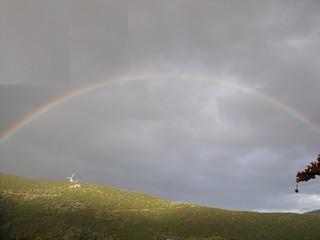 rainbow nov_2008