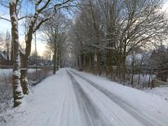 31. Januar 2019 - 10:04 - Winterspaziergang in Roxel am 31. Januar 2019.
