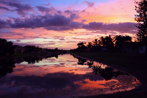 sunrise florida red southflorida broward unitedstates usa coralspringsflorida backyard hometown nature beauty natural mothernature colorful clouds cloudscape lake birds reflection calm beautiful quiet palmtree artisticsunrisephotography landscapephotography naturalbeauty lakeside outdoor sky moody my65footnorfolkpines morningglory water serene tree reflect canal126feetwide dawn roseydawn 121318 happyvalentinesday quartasunset470