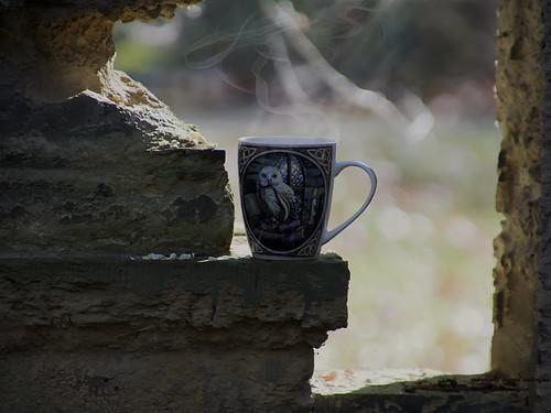 Kaffeepause auf dem Friedhof