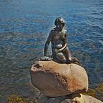 Little Mermaid - Copenhagen