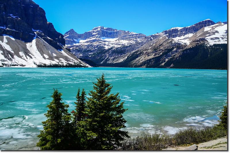 Bow Lake (1)