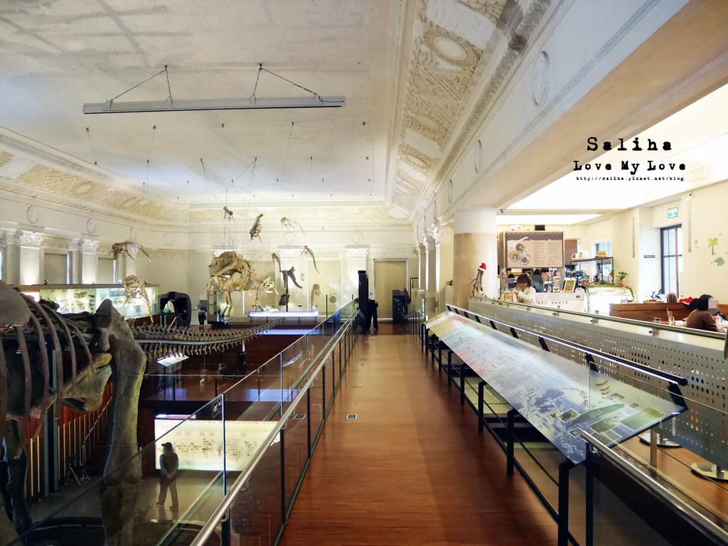 台北車站親子餐廳台灣博物館石尚恐龍主題餐廳恐龍咖啡館 (5)