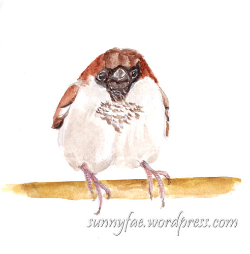 watercolour sketch of a sparrow on a branch