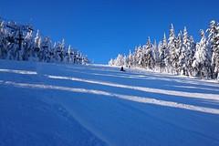 Aktuálně: víkendová obleva i na horách, sněhu dostatek