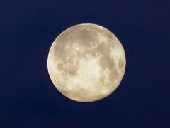 France, la pleine Lune ou Super Nova ce soir sur Narbone - Photo of Fleury