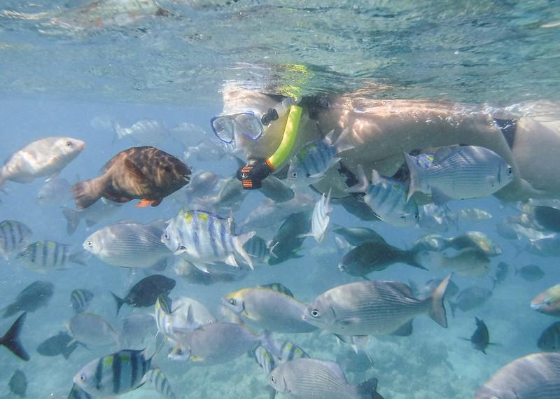 Tarja found a few fish