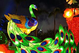 元宵節    Spring Lantern Festival