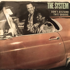 THE SYSTEM:DON'T DISTURB THE GROOVE(JACKET A)