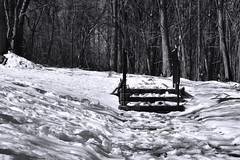 Snowy Stairway, Rossville
