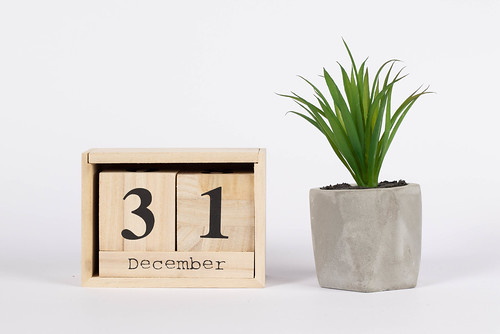 Day 31 of December set on wooden calendar with green plant | by wuestenigel