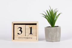 Day 31 of December set on wooden calendar with green plant