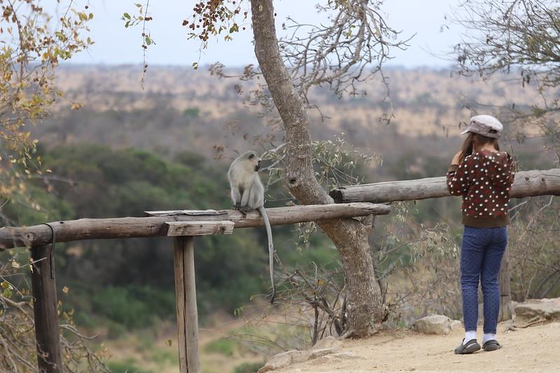 """Улиткины """"Из Африки"""". ЮАР и Намибия в августе 2018"""