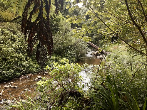 Tresselick Park, Kaiwharawhara, Wellington