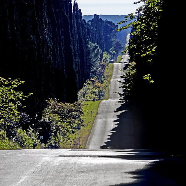 Viale dei Cipressi, Bolgheri, Toscana
