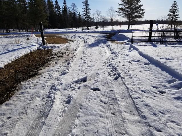 20190321.snow.trap.2