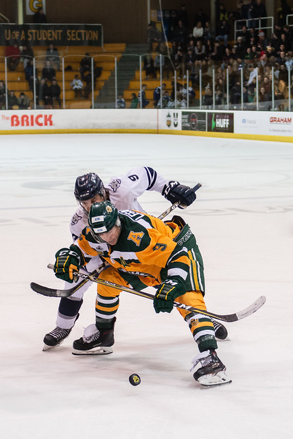 Golden Bears Hockey (01/18/19) Nina Barroso Ramos