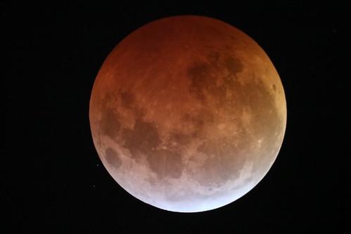 Eclipse 21-01-2019