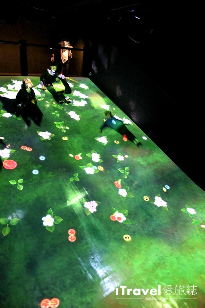 东京艺术展览 teamLab Borderless (50)