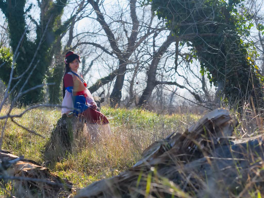 related image - Shooting Mulan - Bords du Rhône - Avignon -2019-02-16- P1477604