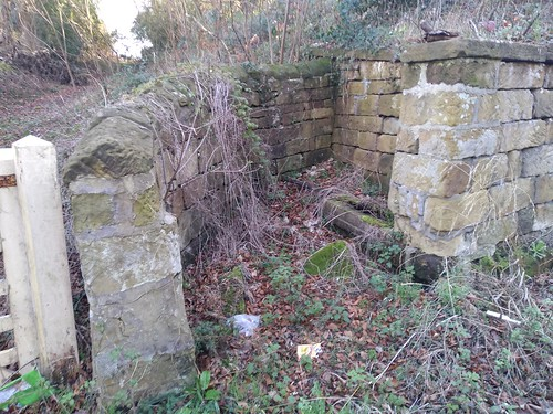 Skelton Well / Water Trough / Cistern | by twiggles