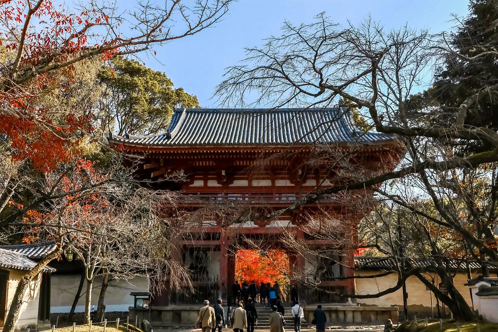 daigoji-temple-alexisjetsets-9