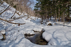 Sakhalin. Winter creek