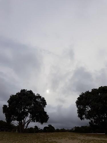 Afternoon in Mangawhai Heads