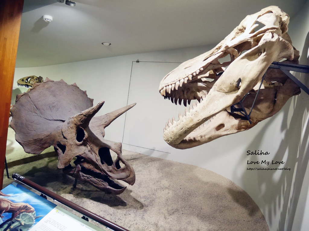 台北車站附近好玩親子景點恐龍博物館門票台博館土銀展示館 (3)