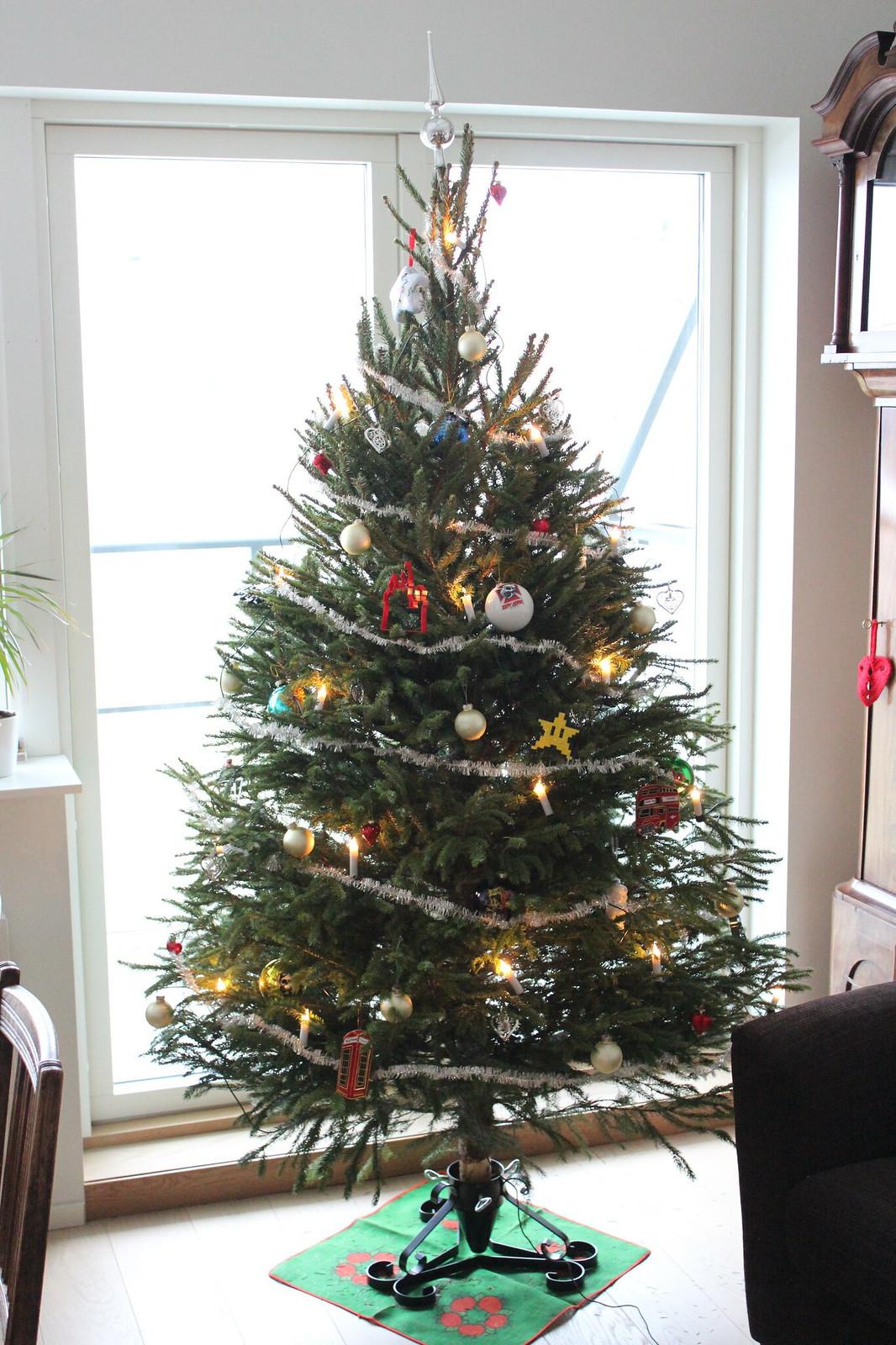 Our first tree / etdrysskanel.com
