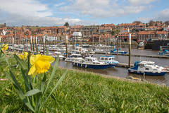 Whitby 2019