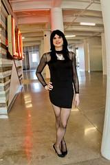 Mesh Dress 2