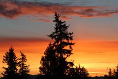 Sunrise, South Everett, WA