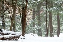 Ledges Snow