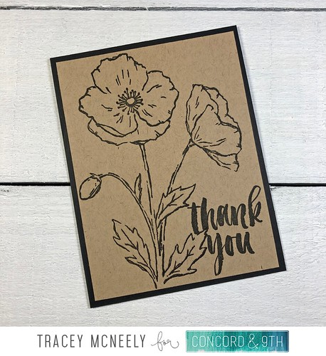 tracey_KraftPoppies_angle