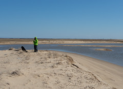 herring cove beach - bluffs