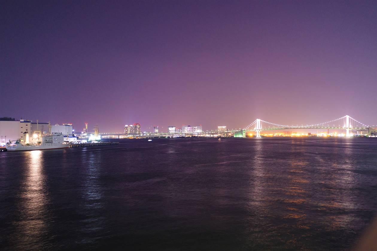 伊豆諸島大型客船からの夜景(レインボーブリッジ)