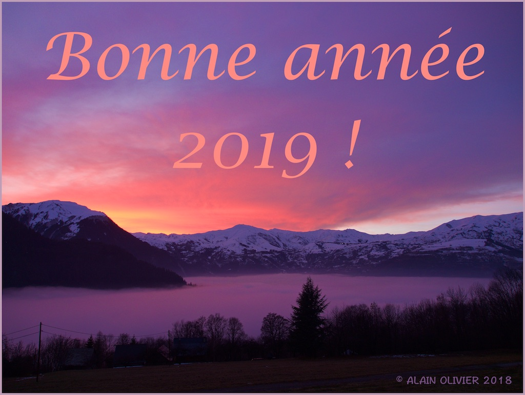 Bonne et heureuse année 2019 ! 44729471410_053f89da07_o
