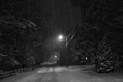13/365 - Snow night