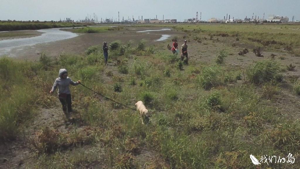 這次任務,保育偵測犬寶麗找到了一百多隻屍體。