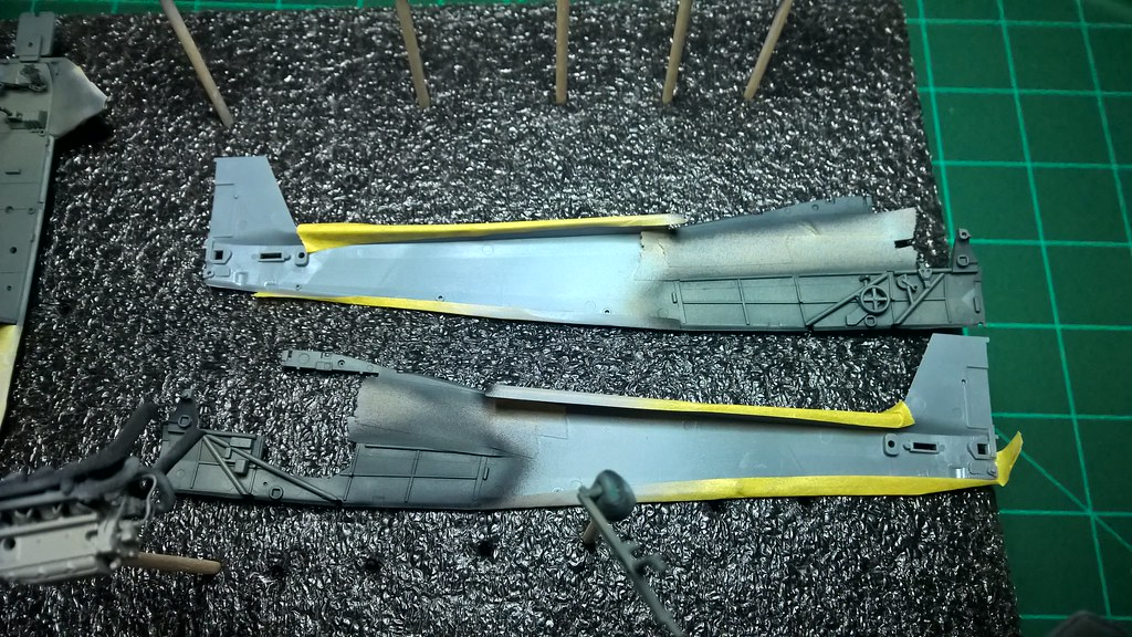 Storch 15
