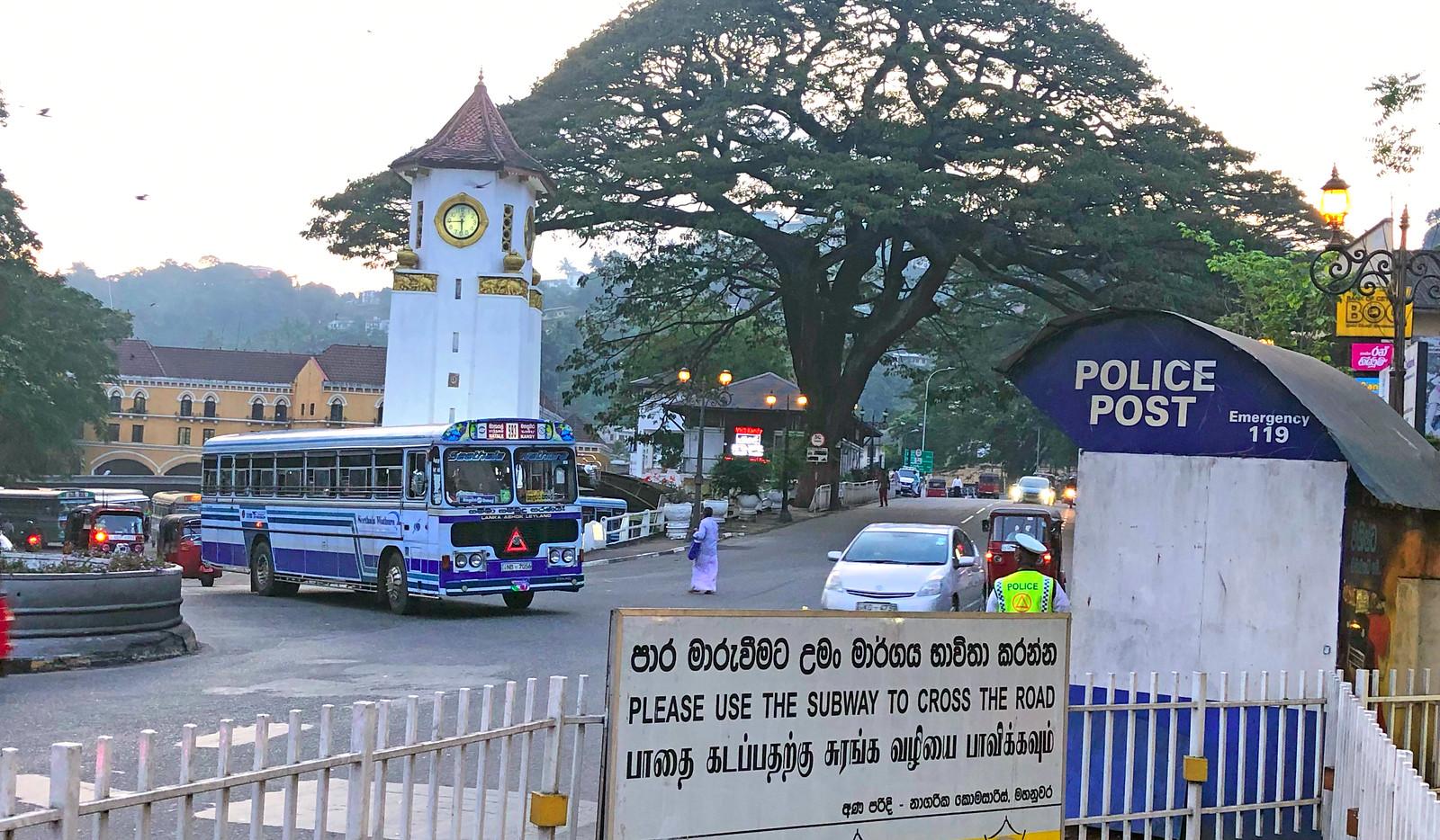 Kandy en un día, Sri Lanka kandy en un día - 47013332482 8482fb0c73 h - Kandy en un día, Sri Lanka